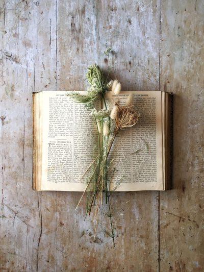 silvia matzeu 5 consigli essenziali per creare foto flatlay libro con fiori