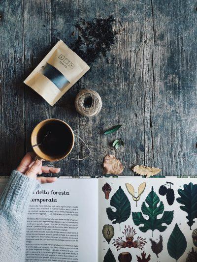 come fare foto per instagram in 5 mosse una tazza di te e un libro sulla natura
