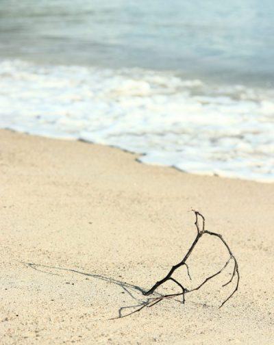 stile-fotografico-su-instagram-3- un ramo in riva al mare
